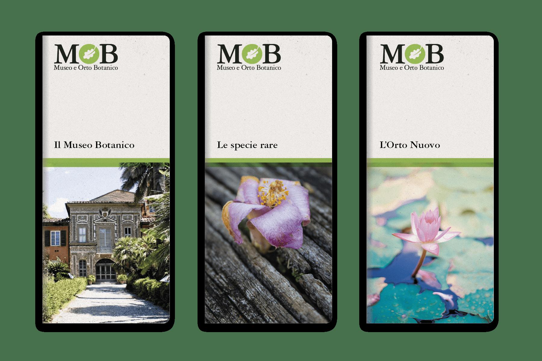 MOB Museo e Orto Botanico di Pisa